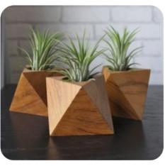 wooden-plant-holder