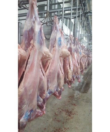 Fresh Halal lamb meat