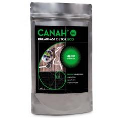 organic-breakfast-detox